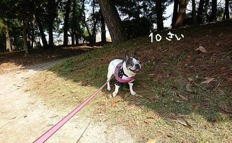 10さいのお誕生日.jpg