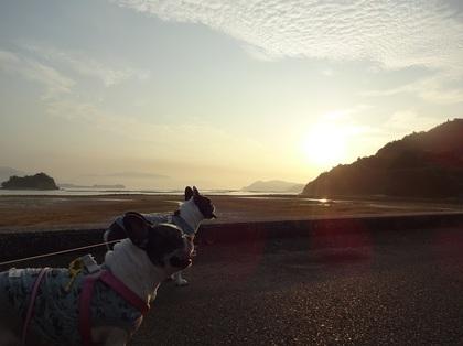 ひろしま4:朝日.jpg