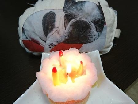 ろうそくケーキに.jpg