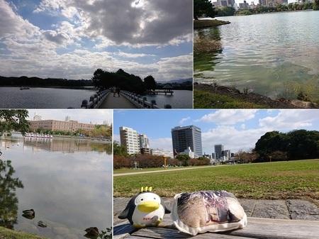 中の島〜舞鶴公園.jpg