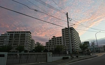 今日の朝焼け.jpg