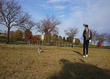 公園で散歩.jpg